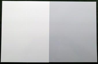 Mylar 43,4x28,1 cm